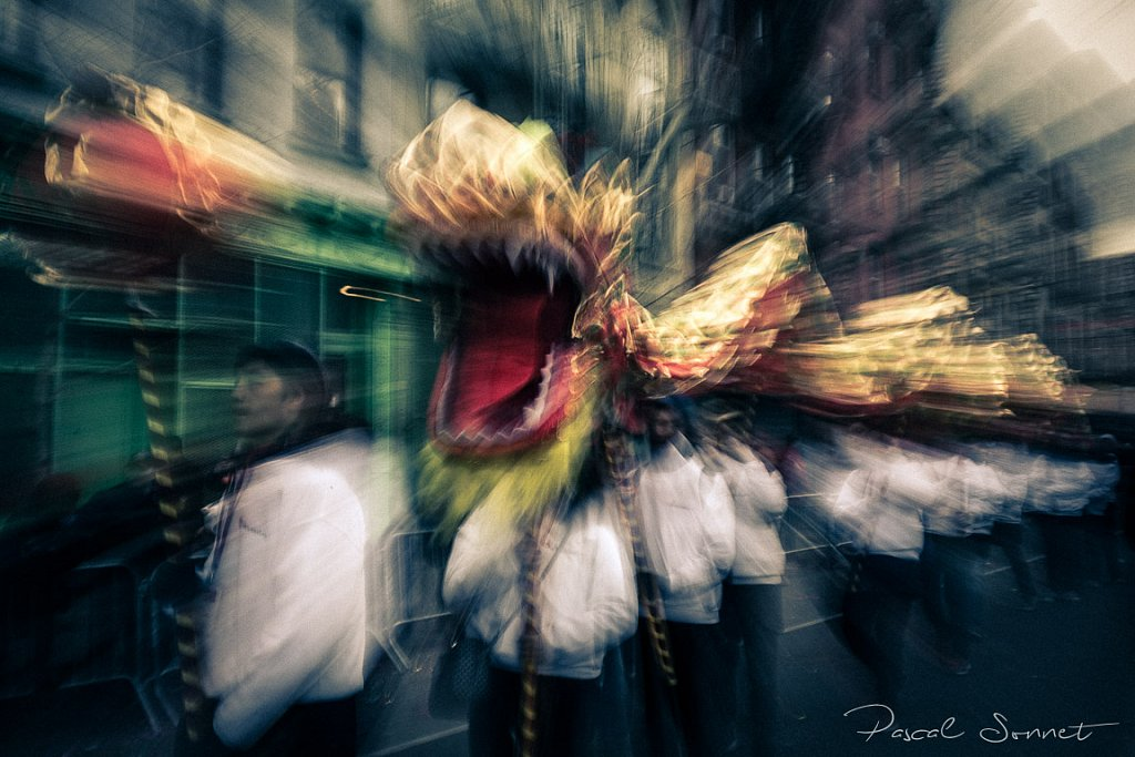 series : Rooster Year